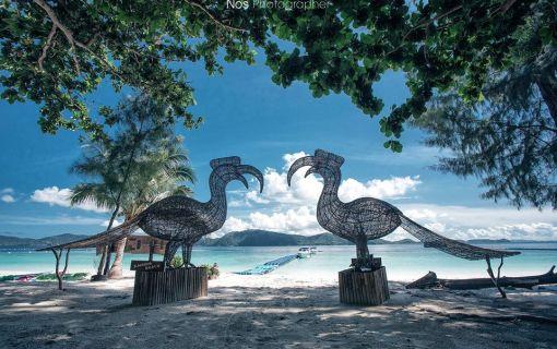 タイ在住者限定 コーラル島