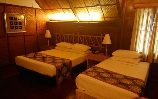 ベーシックプラン(タマンネガラ国立公園ムティアラに泊まる3泊4日 (クアラルンプール発))