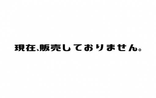 【年末年始・テトシーズン】ベーシックプラン (ホイアン旧市街半日観光&午前 (ホイアン発))