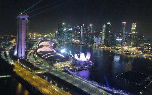 シンガポールフライヤー付きプラン(午後発!シンガポールのパワースポットとトライショー&夜景ツアー)