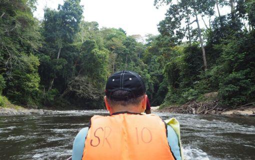 ジャングル体験!タマンネガラ国立公園ムティアラに泊まる2泊3日 (クアラルンプール発)