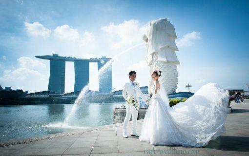 シンガポール フォトウェディング 【週末も夜景もドレスも選べるロケーションフォトプラン】