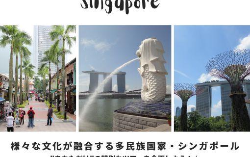 シンガポール現地旅行会社でオンライン・海外インターン★