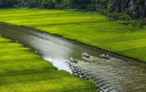 ベーシックプラン(【ハノイ発】【世界遺産】ホアルー&チャンアン&胡朝の城塞ツアー)