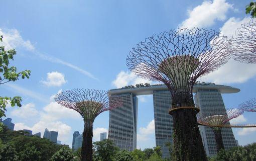 1日満喫!お手軽シンガポール市内観光&人気動物園