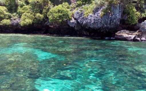 タイ在住者限定 ピピ島とバンブー島