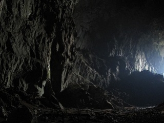 世界遺産・ムル国立公園1泊2日 ...
